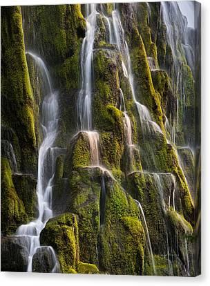 Proxy Falls Textures Canvas Print by Leland D Howard