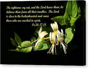 Psalms Scripture With Honey Suckle Flowers Canvas Print