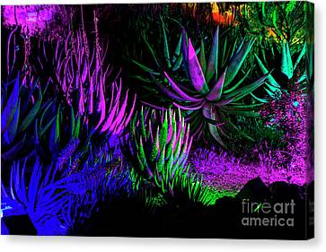 Psychedelia Canvas Print by Kathy McClure