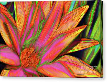 Canvas Print featuring the photograph Psychedelic Daisy By Kaye Menner by Kaye Menner