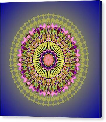 Psychedelic Mandala 001 A Canvas Print by Larry Capra