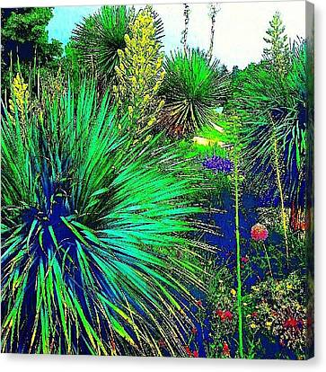 Psychedelic Yuccas. #plant #yucca Canvas Print by Austin Tuxedo Cat