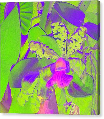 Canvas Print featuring the photograph Psychodelicorchidblue by Alexandra Masson