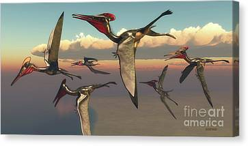 Pterodactylus Pterosaurs In Flight Canvas Print