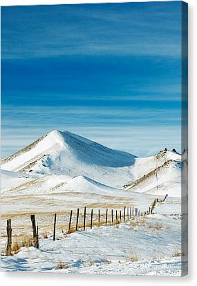 Pthalo Blue On White Canvas Print by Todd Klassy