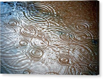 Puddle Patterns Canvas Print by Gwyn Newcombe