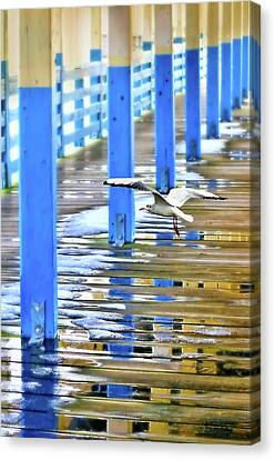 Puddles Canvas Print by Diana Angstadt