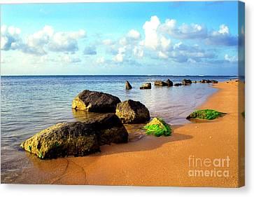 Puerto Rico Rio Grande Shoreline Canvas Print by Thomas R Fletcher