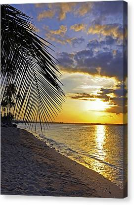 Puerto Rico Sunset 3 Canvas Print by Stephen Anderson