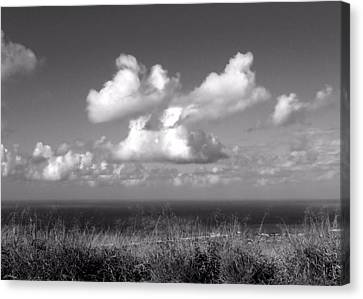 Puffy Clouds Canvas Print