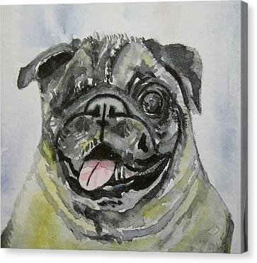 One Eyed Pug Portrait Canvas Print