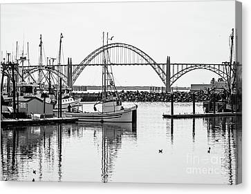 Pulling Into Newport Harbor Canvas Print