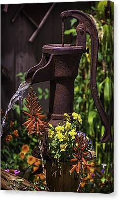 Pumping Water Canvas Print by Garry Gay