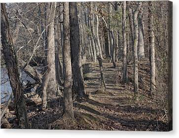 Pumpkin Ash Trail Canvas Print