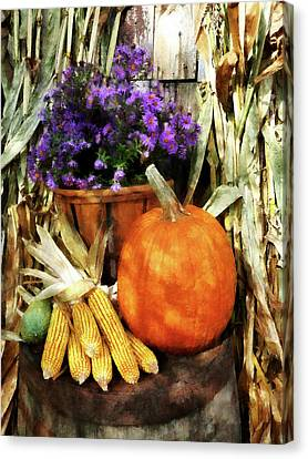 Pumpkin Corn And Asters Canvas Print by Susan Savad