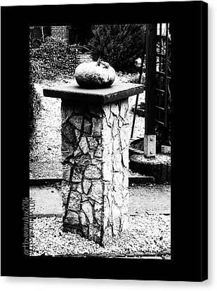 Canvas Print featuring the photograph Pumpkin On A Pedestal by Mimulux patricia no No
