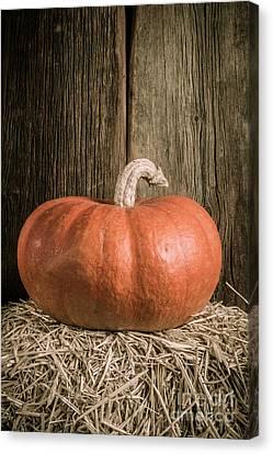 Pumpkin On Straw Bale Canvas Print
