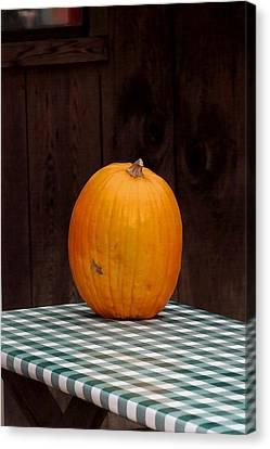 Pumpkin Portrait Canvas Print by Art Block Collections