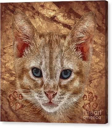Animal Artist Canvas Print - Pumpkin by Shafawndi Heartski