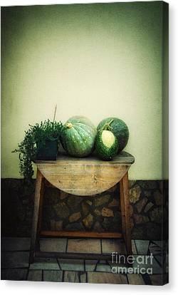 Pumpkin Table Canvas Print by Carlos Caetano