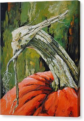 Pumpkin1 Canvas Print by Chris Steinken