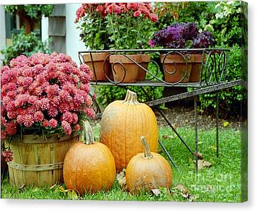 Pumpkins And Flowers Canvas Print by Linda Drown