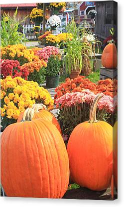 Pumpkins And Mums In Farmstand Canvas Print by John Burk
