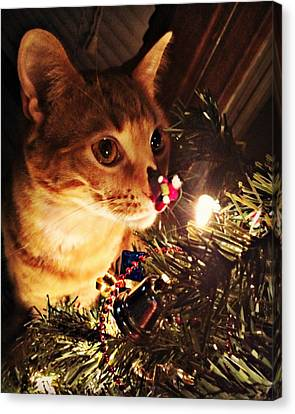 Pumpkin's First Christmas Tree Canvas Print by Kathy M Krause