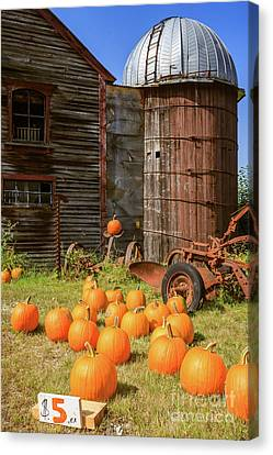 Farm Stand Canvas Print - Pumpkins For Sale Old New England Farm by Edward Fielding