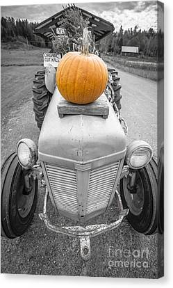 Farm Stand Canvas Print - Pumpkins For Sale Vermont by Edward Fielding