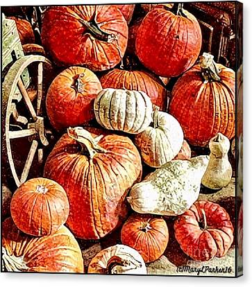 Pumpkins In The Barn Canvas Print by MaryLee Parker