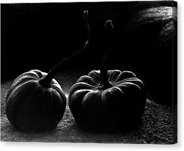 Pumpkins Canvas Print by Jarmo Honkanen