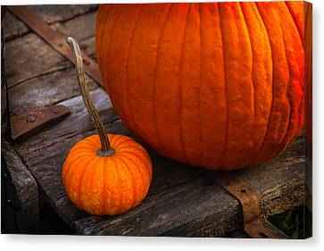 Pumpkins Sitting On Wooden Wagon Canvas Print by Garry Gay