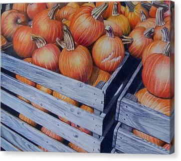 Pumpkins Two Canvas Print by Constance Drescher