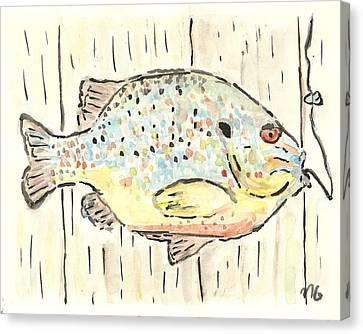 Pumpkinseed Sunfish Canvas Print by Matt Gaudian