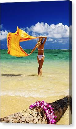 Punaluu Beach Vacation Canvas Print by Tomas del Amo - Printscapes
