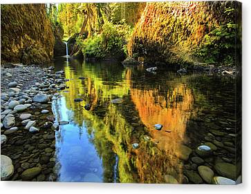Punch Bowl Falls Canvas Print by Joe Klune