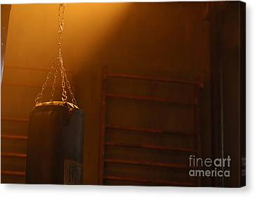 Punching Bag In The Light Canvas Print