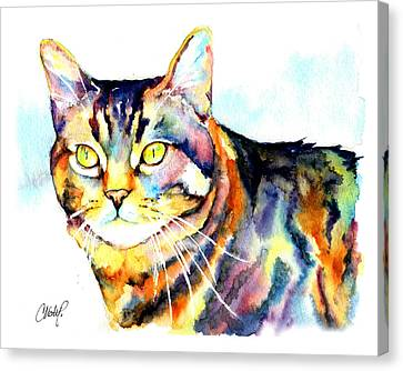 Punky Kitty  Canvas Print by Christy  Freeman