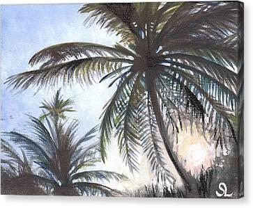 Puntas Sunrise Canvas Print by Sarah Lynch