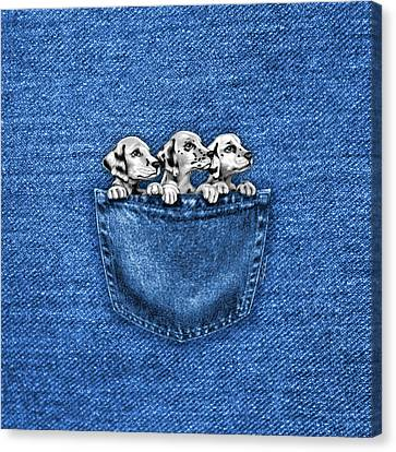 Canvas Print featuring the drawing Puppies In A Pocket by Cindy Anderson