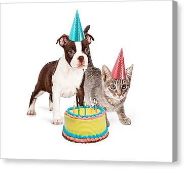 Puppy And Kitten With Birthday Cake Canvas Print