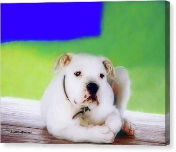 Buy Dog Art Canvas Print - Puppy Art 2 by Miss Pet Sitter