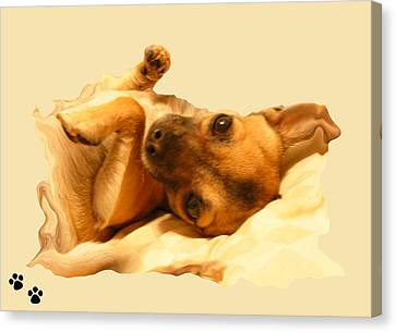 Puppy Love Canvas Print by Amanda Vouglas