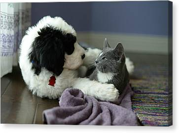 Canvas Print featuring the photograph Puppy Love by Linda Mishler