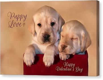 Puppy Love Canvas Print by Lori Deiter