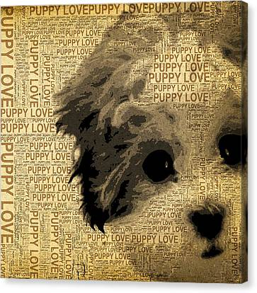 Puppy Love Canvas Print by Stacey Chiew