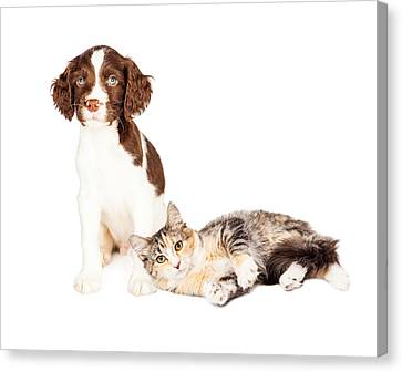 Puppy Sitting Kitten Laying With Copy Space Canvas Print
