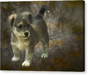 Doggy Cards Canvas Print - Puppy by Svetlana Sewell
