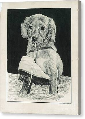 Puppy With Shoe Canvas Print by Samuel Showman